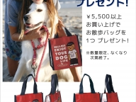 DOGDEPT 「お散歩バッグプレゼント」
